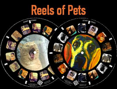 A custom reel makes a perfect keepsake of your favorite pet photos