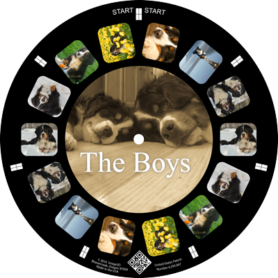 Showcase your wonderful dogs on a custom reel