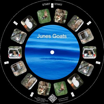 A fun reel of goats
