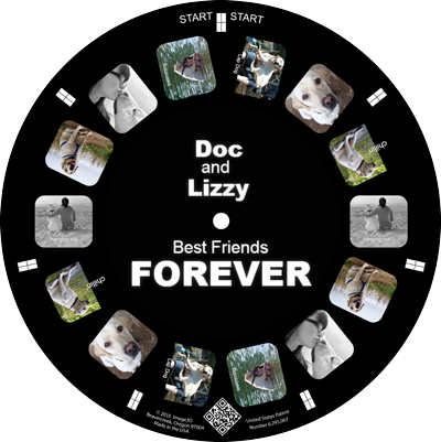 Dogs are a persons best friend. Make a keepsake reel of your pup