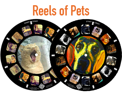 A custom reel makes a perfect keepsake of your favorite pet photos